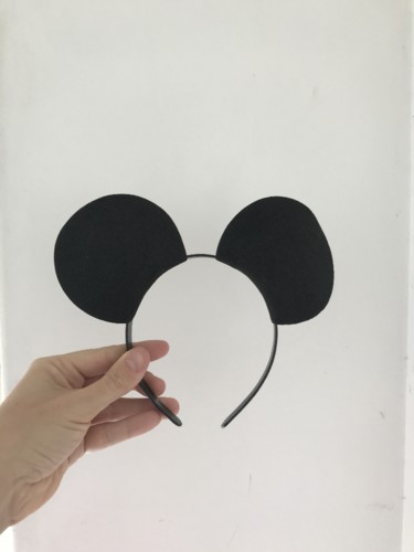 Mickey 5.JPG