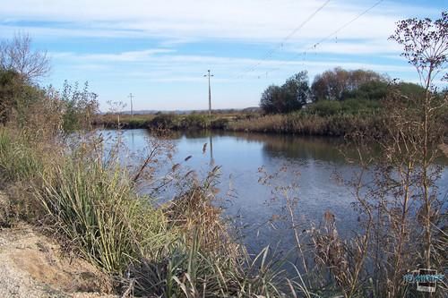 Mau sítio para pesca por fios alta tensão (1)