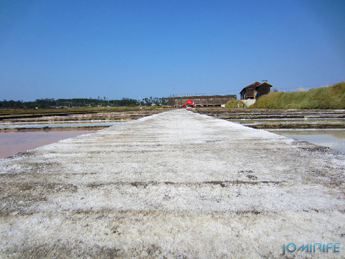 Salinas da Figueira da Foz (6) Sal pelo caminho [en] Salt fields of Figueira da Foz in Portugal