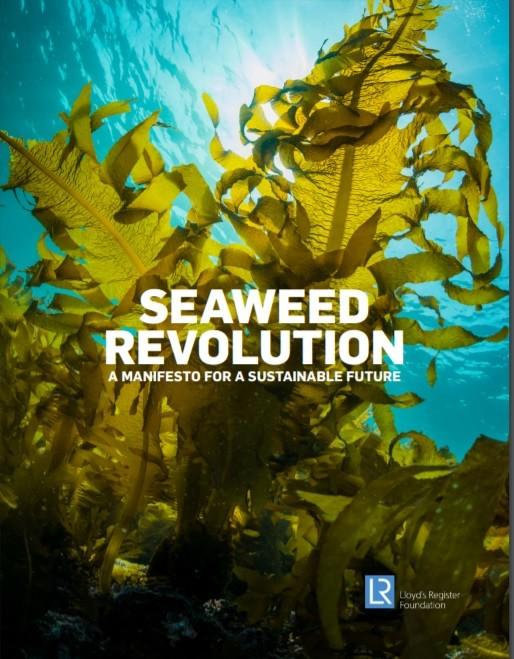 Seaweed Manifesto.jpg