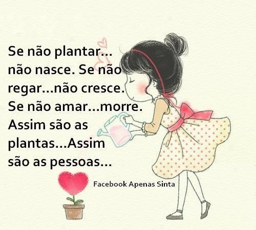 Se não plantar