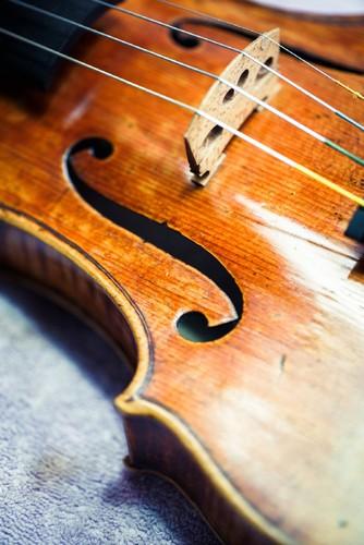 Violinos (3).jpg