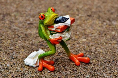 frog-1339892_1920.jpg