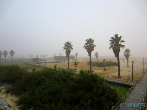 Figueira da Foz ao inicio do dia com nevoeiro - Oásis da praia (1) [en] Figueira da Foz in the morning with fog - Oasis in the Beach