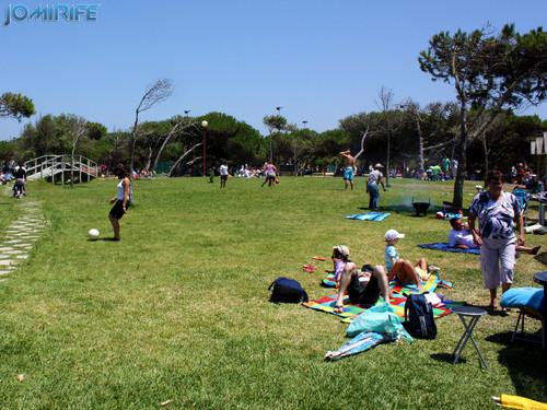 Parque de merendas da Gala (Figueira da Foz) com muitas famílias à hora de almoço [EN] Picnic park in Gala (Figueira da Foz) with many families at lunchtime
