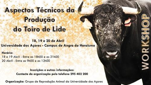 Workshop, no Pólo de Angra da UAç...