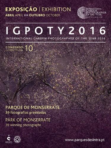 IGPOTY_2017_Cartaz.jpg