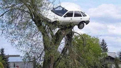 carro da maria Oh por favor.jpg