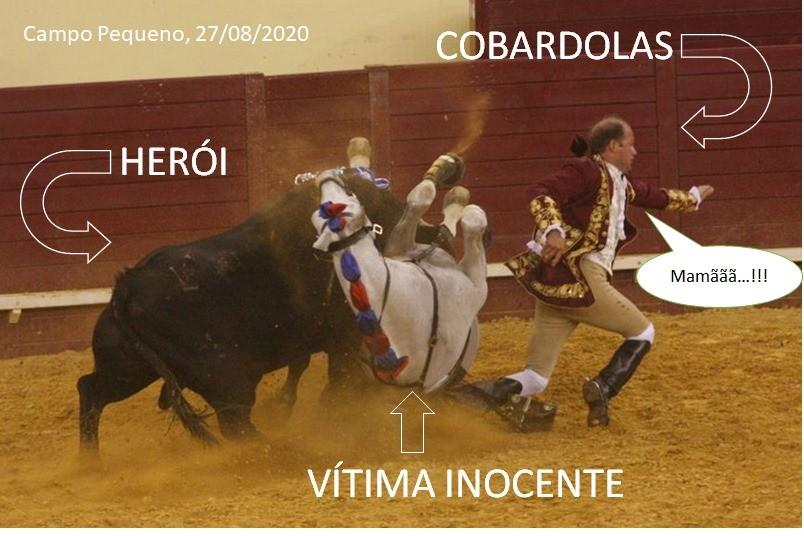 COBARDOLAS.jpg