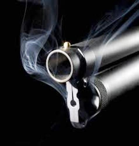 pistola fumegante.jpg