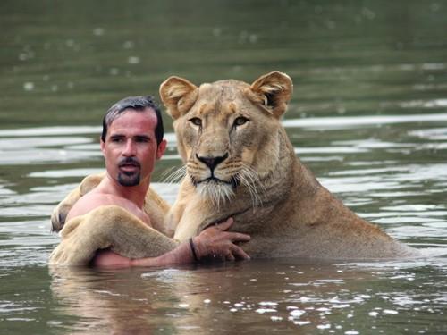 a diferença entre animalidade e humanidade segundo rousseau o