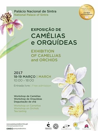 1_Cartaz_Exposicao_Cameliasorquideas Sintra 2017.j