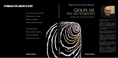 GOLPE DE ASA FOTOTOTAL.bmp.jpg