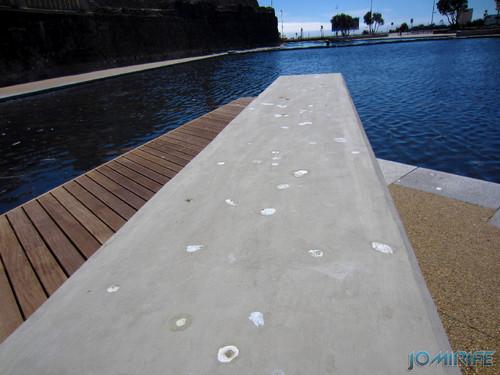 Jardim Espelho de água da Figueira da foz com Cocó das gaivotas [en] Garden Water mirror Figueira da foz with Seagulls crap
