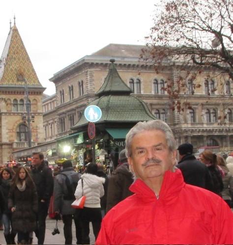Henrique Salles da Fonseca, Budapeste.jpg