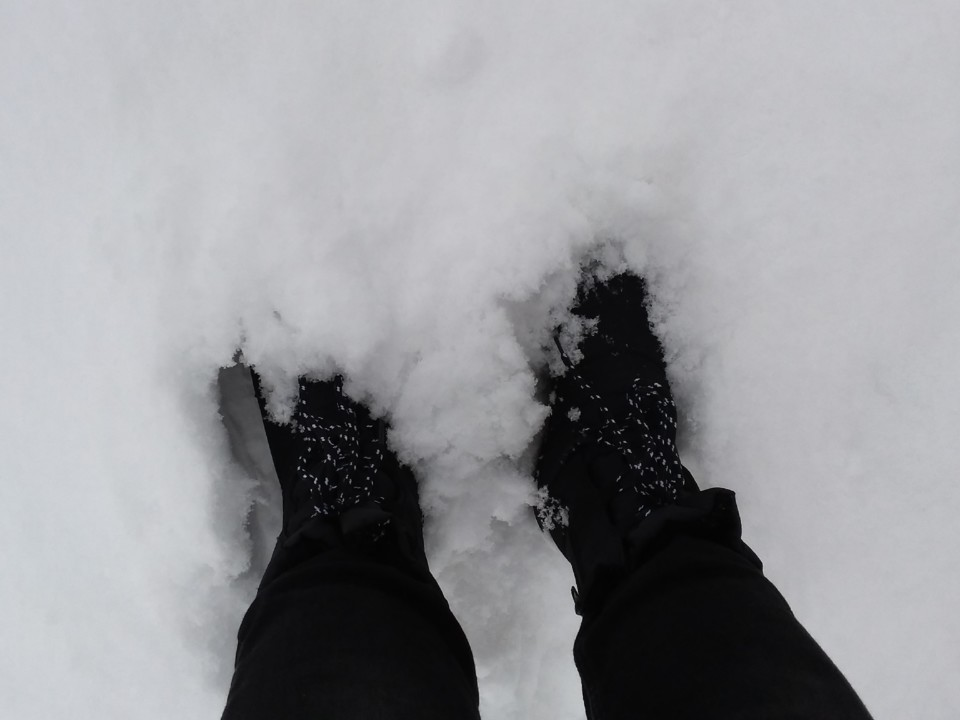 2021-02-09 Neve (3).jpg