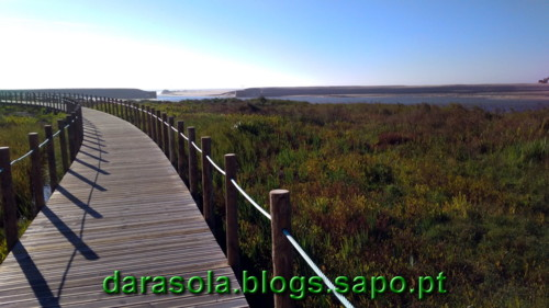 Passadico_Esmoriz_26.jpg
