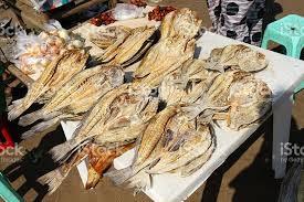 peixe seco1.jpg