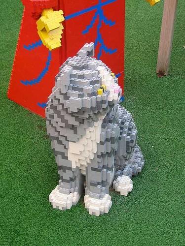 lego-gato-13.jpg