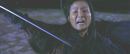Crouching-Tiger-Hidden-Dragon 4.png