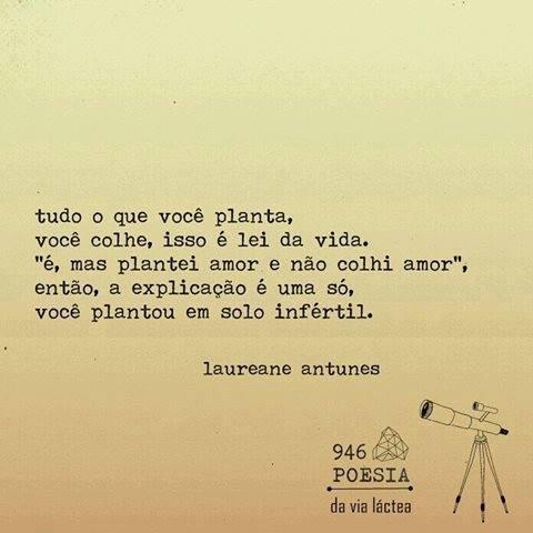 Frases De Laureane Antunes No Facebook Tudo O Que Plantas Colhes