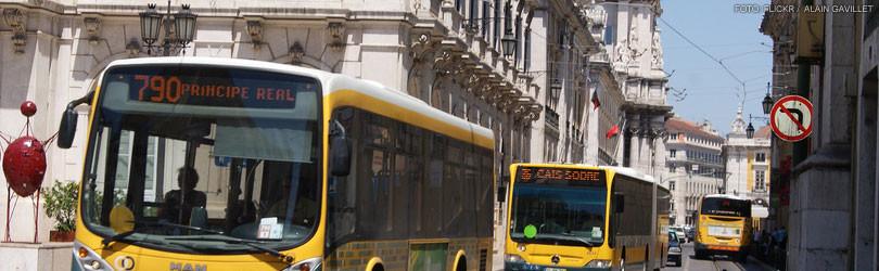 transit1.jpeg