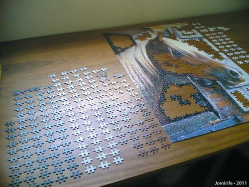 Puzzle do Cavalo (1)