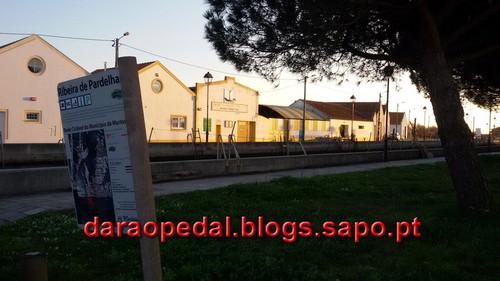 Volta_cais_Murtosa_27.jpg