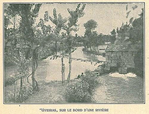 Uveiras nas margens do Rio Sousa