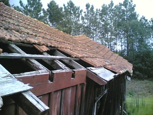 Casa amarela em Santana: Telhado do barracão