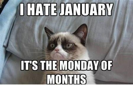 3-I-hate-January-meme.jpg
