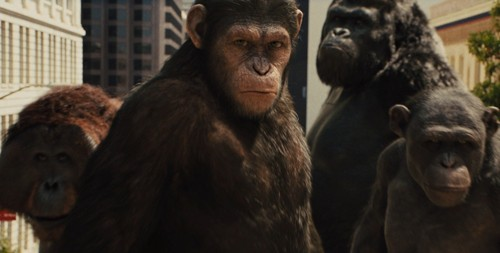 rise-of-the-planet-of-the-apes-caesar.jpg