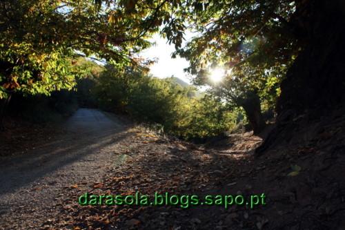 Las_medulas_28.JPG