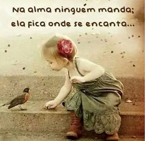 FB_IMG_1483989714494.jpg