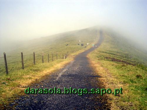 Azores_Faial_caldeirao_21.JPG