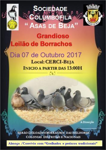 Leilão Asas de Beja.jpg