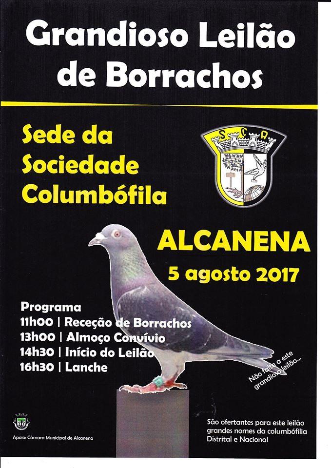 Leilão Alcanena.jpg