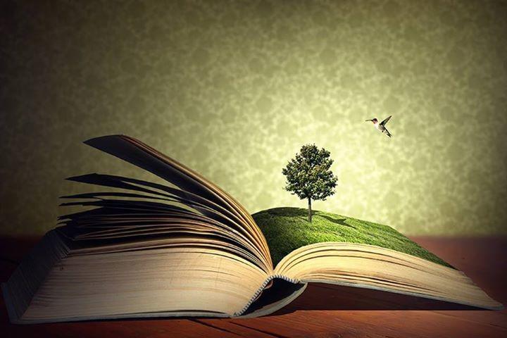 árvore2 livro.jpg