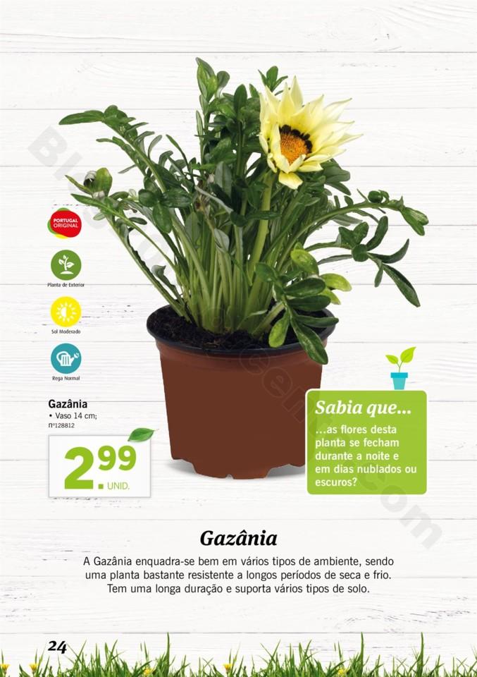 Mercado-de-Plantas-A-partir-de-04.04-01_023.jpg
