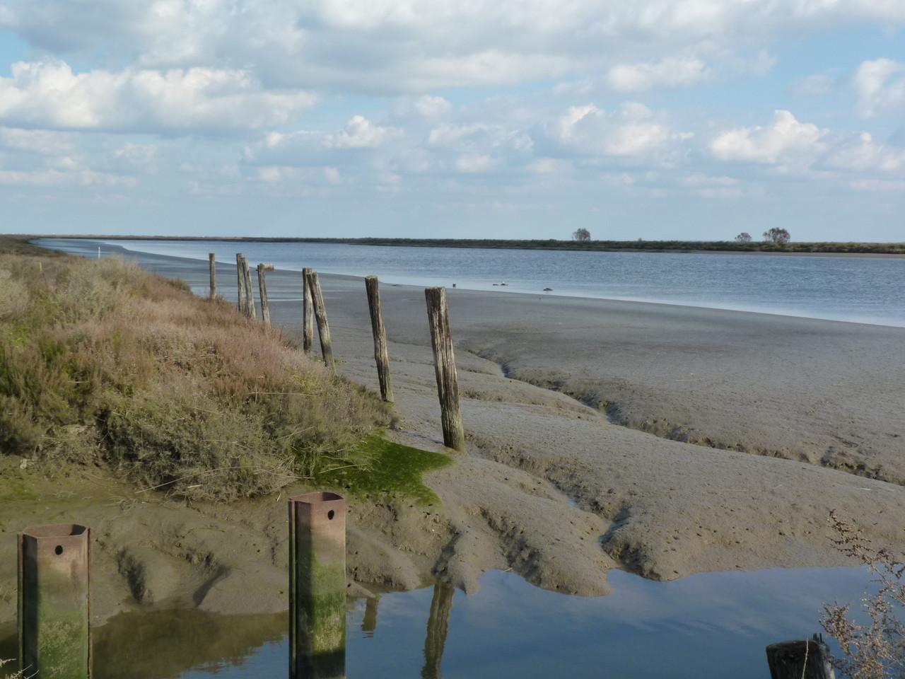 Parque Linear Ribeirinho do Estuário do Tejo (16)