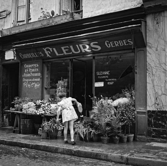 Alexandre Trauner     Fleurs, Paris     c.1940.png
