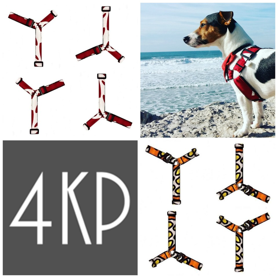 4KP_harness_no_pull.jpg