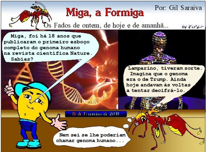 Miga456.JPG