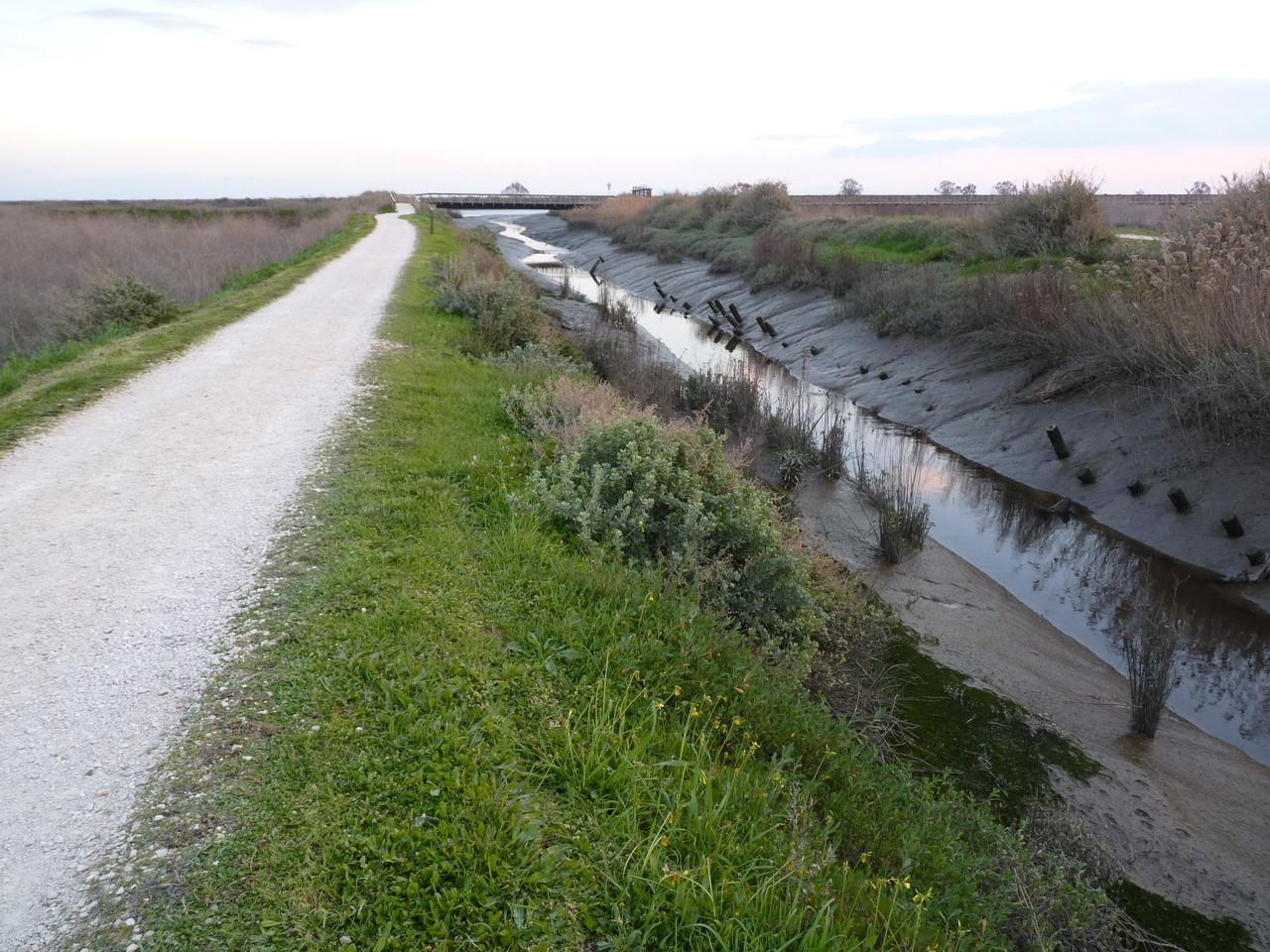 Parque Linear Ribeirinho do Estuário do Tejo (40)