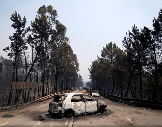 Estrada Nacional.jpg