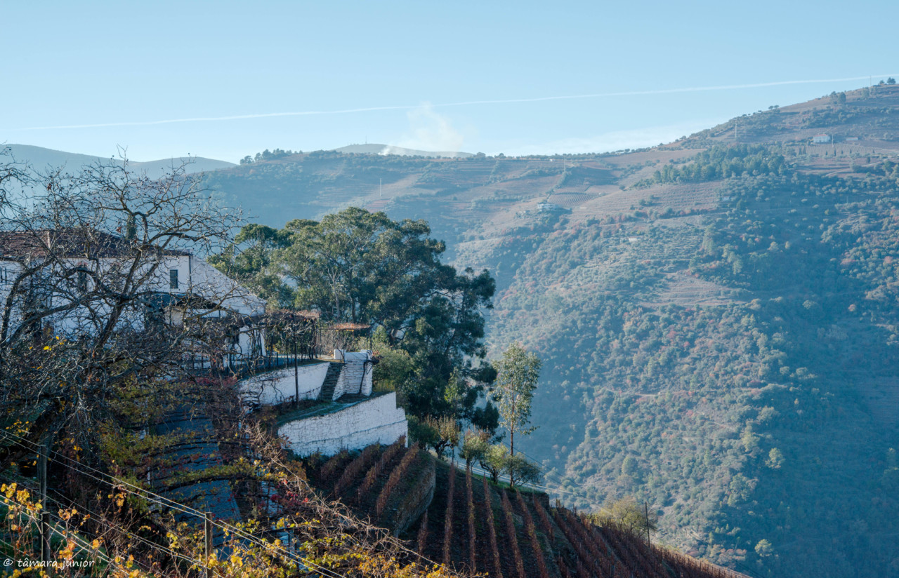 2017.- Pelo Douro no outono II (532).jpg