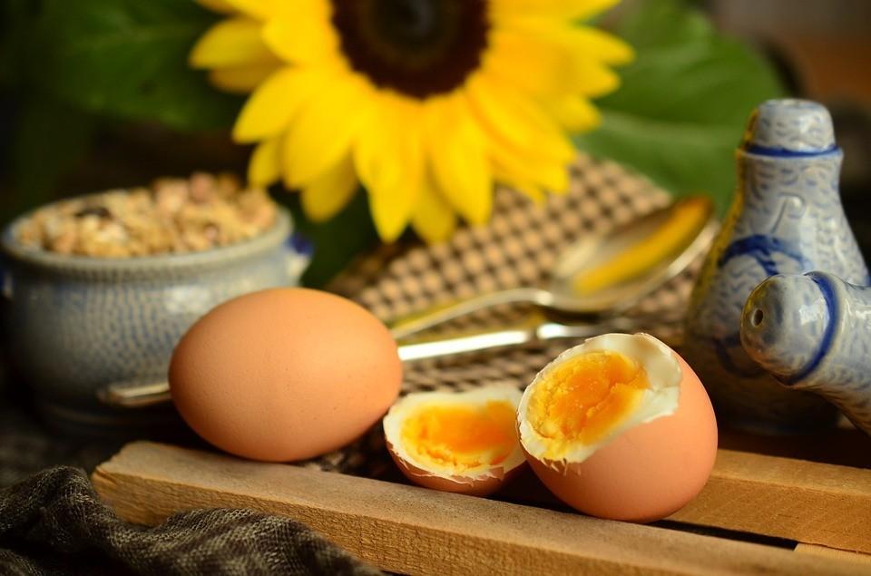 egg-869300_960_720.jpg