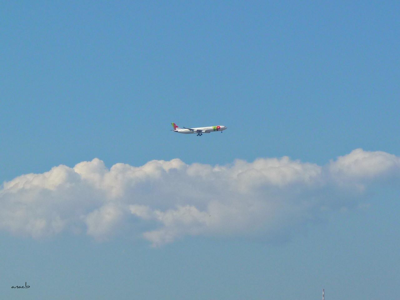 avião 5.jpg