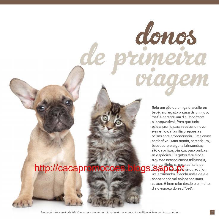 pp_Page11.jpg