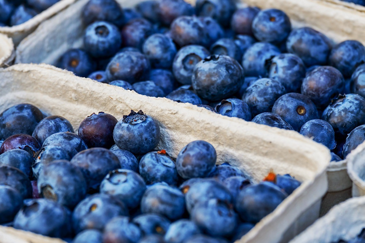 blueberries-3474854_1280.jpg